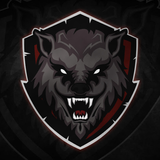 Profile picture of wolf gamer
